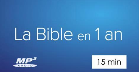 bible-en-1-an